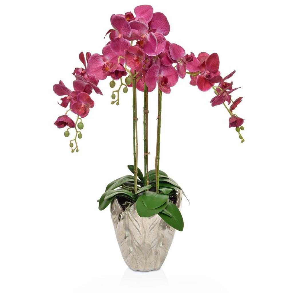 AN-Dk/Pk Orchids XJ in Leaf Vase 70cm