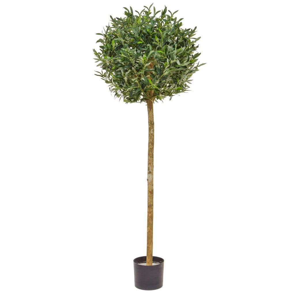 NTT Olive Ball Tree 150cm BA