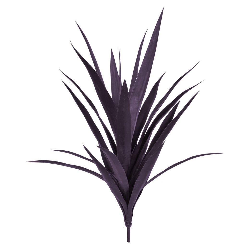 Plants Yucca A Burgundy 59cm w/16lvs