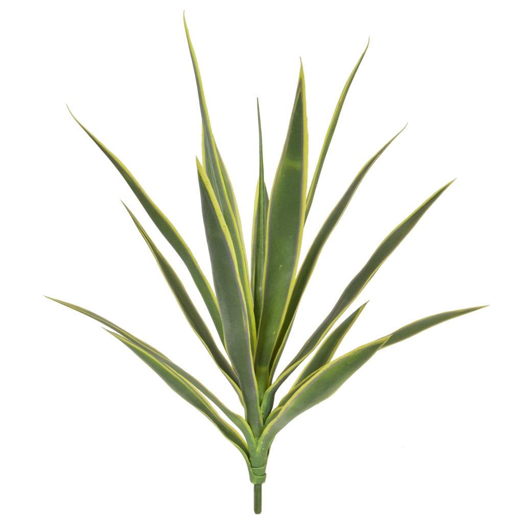 Plants Yucca C Green Cream 59cm w/16 lvs