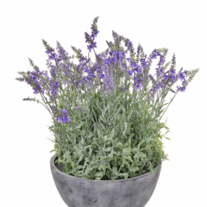 Artificial lavender in pot